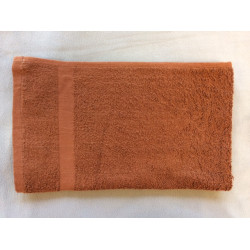 Beauty Salon Towels  Economical Solid Colored Hand Towels 27x16 wt. 2.75 lbs/dz. Brown 12/Pack